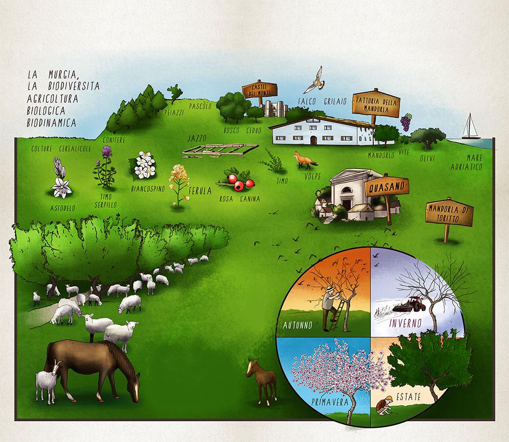 Ordine speciale dalla fattoria della mandorla mondomangione for Grandi planimetrie della fattoria